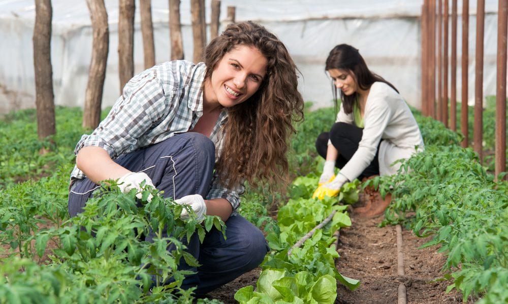 giovani-in-agricoltura