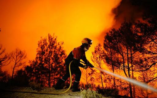 Quando impareremo a valorizzare i forestali nella prevenzione degli incendi?