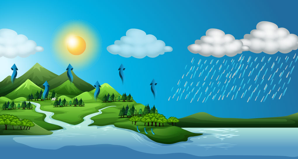 Che significa transizione ecologica?